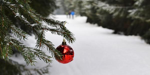 Weihnachten auf dem Campingplatz