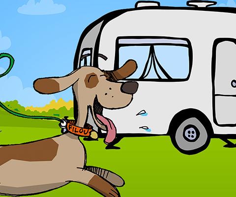 le Guide des chiens au camping TCS
