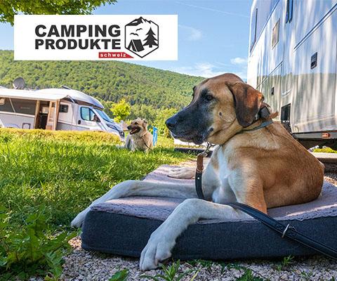 Nous vous présentons cinq produits de camping férocement cool pour les chiens