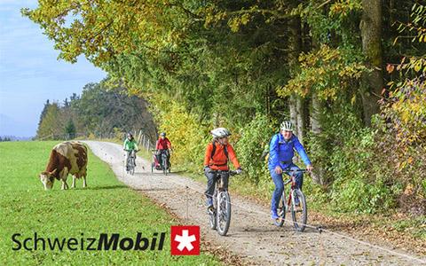 Schweiz Mobil Abo